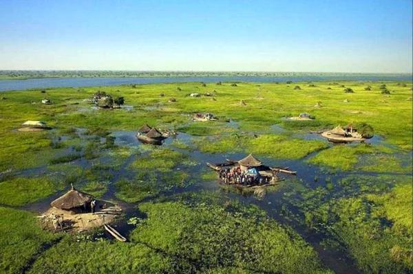 Нилоты: они живут посреди самого большого болота Африки Нилоты, Племена, Африканские племена, Болото, Традиции, Видео, Длиннопост