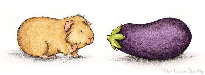 В поисках друга Морская свинка, Рисунок, Овощи