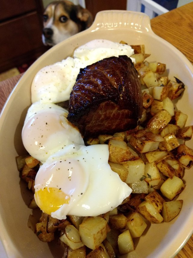 Приготовил стейк с картошкай и яйцом! Стейк, Вкусно, Собака, Готовим дома