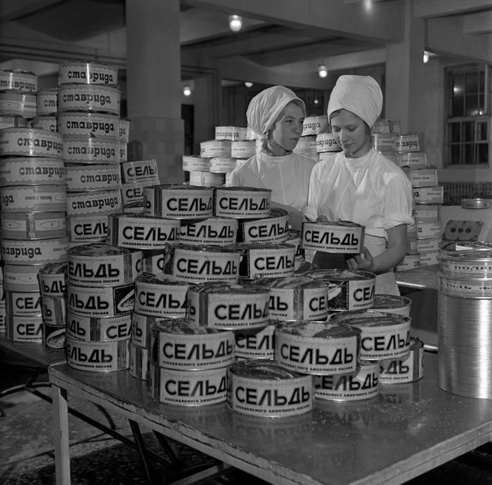 На заводе по производству морепродуктов в Мурманске, СССР 1971год.