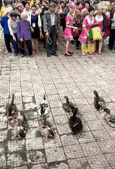 Китайцы знают толк в развлечениях