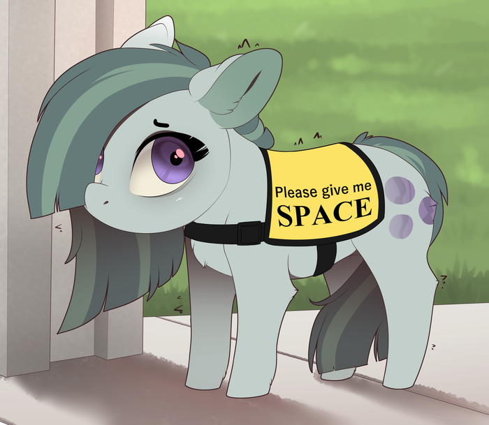 Ponies Wants Space My Little Pony, Marble Pie, Evehly
