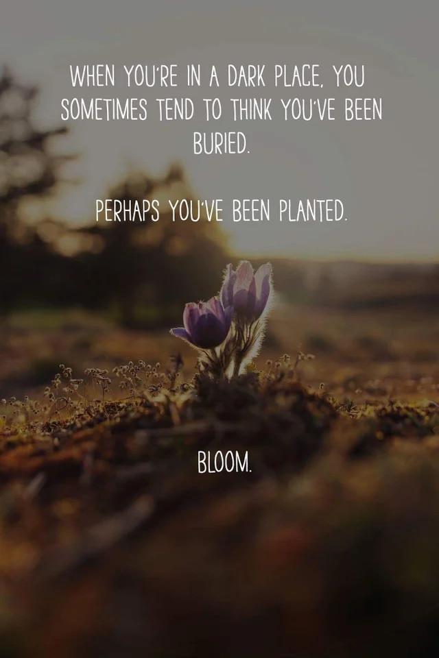 Когда ты в полной темноте, ты порой склонен думать, что тебя похоронили... Reddit, Перевод, Мотивация, Метафора, Картинка с текстом