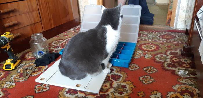 Кот -помощник Кот, Помощь