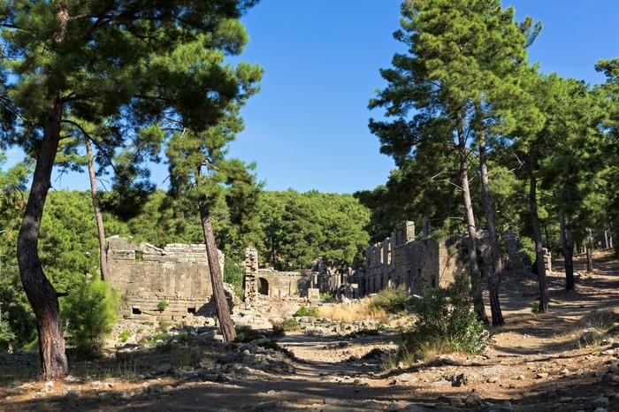Селевкия История, Античность, Туризм, Турция, Фотография, Длиннопост
