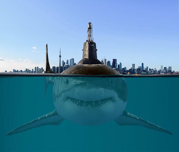 """Хищные """"Акулы"""" в естественной среде обитания Акула, Проект 941, Подводная лодка, Длиннопост"""