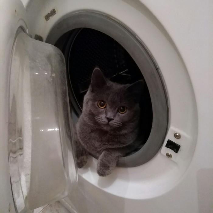 Мой космонавт готовится к запуску.