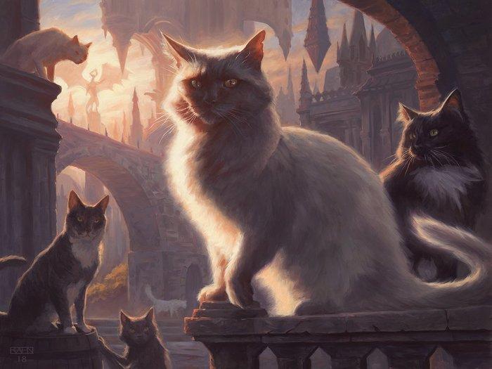 Как увековечить своего питомца в Magic the Gathering Magic the gathering, Кот, Арт, Грусть, Настольные игры, Длиннопост