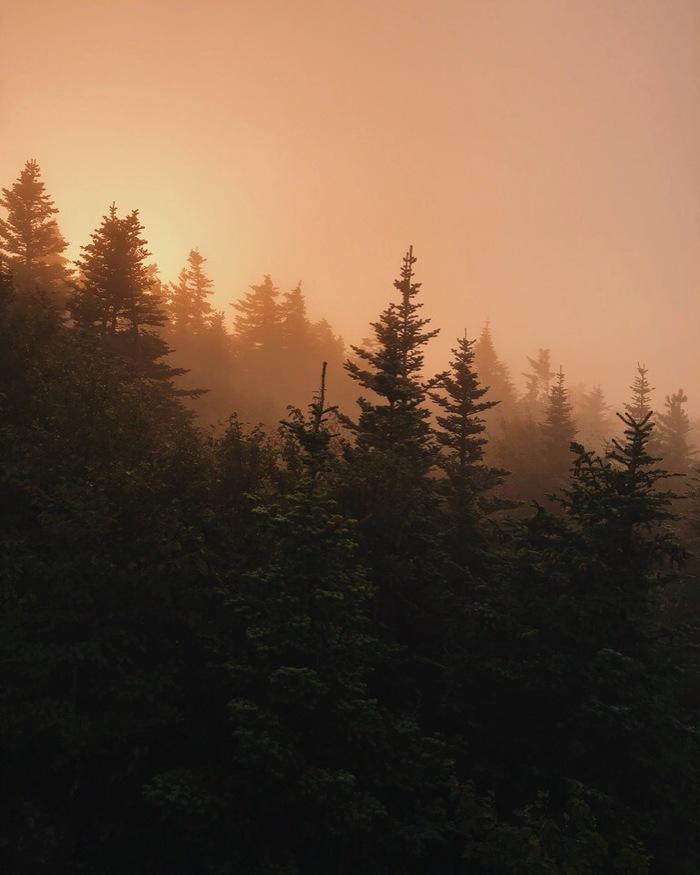 Рассвет На Фалазе (Литовка) Лес, Природа, Рассвет, Горы, Путешествие по России, Мобильная фотография, Длиннопост