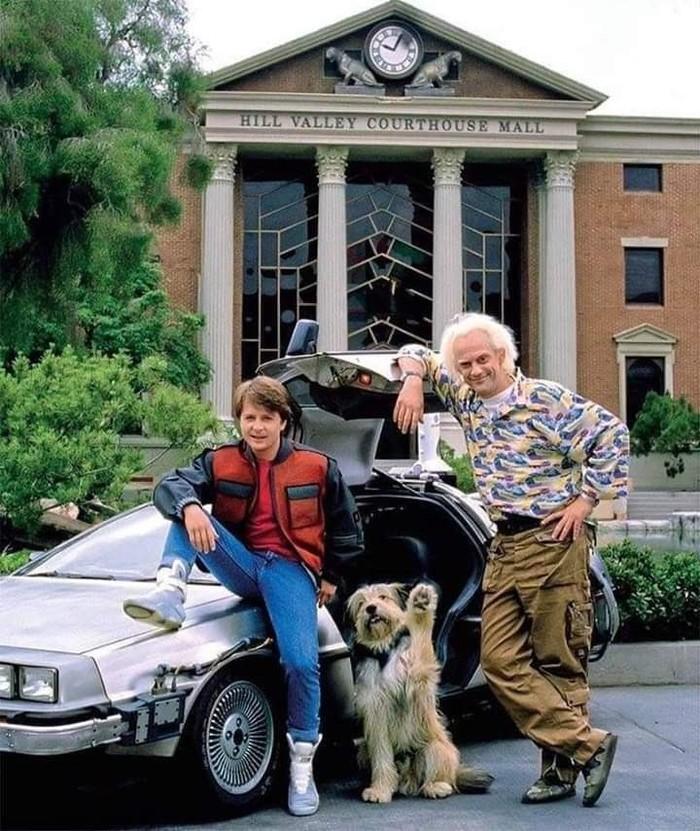 Марти ,  Док и Эйнштейн  1989 Назад в будущее, Фильмы, Ностальгия, Вспомнить, Марти, Знаменитости, 80-е
