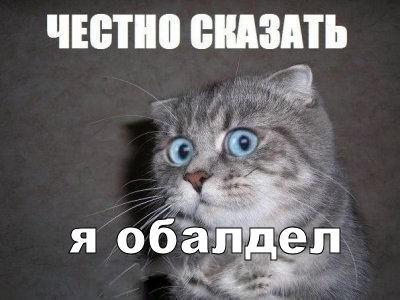 Нервно смеюсь) Школа, Начальство, Зарплата, Повышение зарплаты, Негатив, Кот
