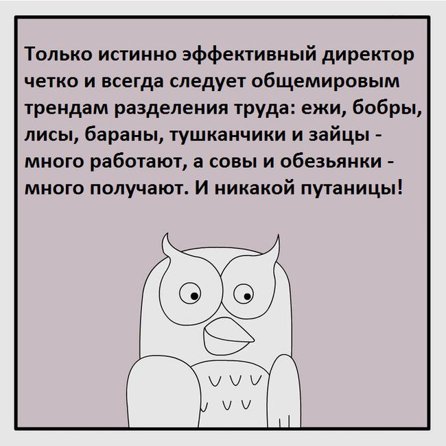 Кесарю - кесарево Фанфики об эффективной сове, Комиксы, Юмор, Работа