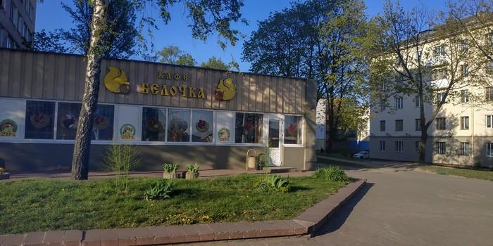 "Кафе ""Белочка"" доведет вас до белочки Фотография, Минск, Кафе"