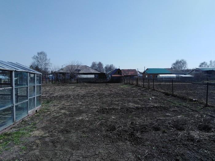 Как я стал огородником Огород, Блог