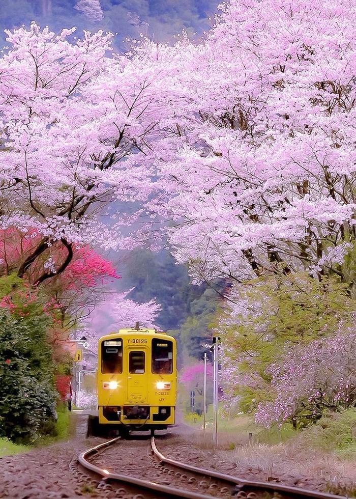 Hita Oita Prefecture, Japan