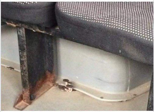 А у вас в маршрутках растут грибы ? Автобус, Маршрутка, Грибы, Трэш, Ростов-На-Дону