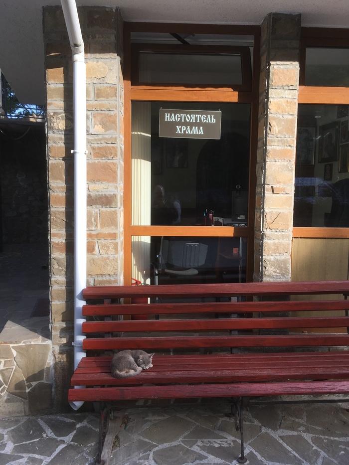 Не беспокоить... Кот, Крым, Храм, Фотография