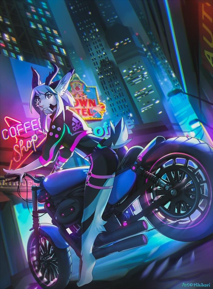 Neon Rider Город, Фурри, Арт, Hihikori, Мотоциклы