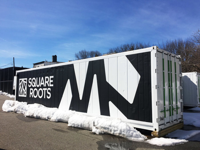 Square roots Илон Маск, Растения, Еда, Будущее, Технологии, Длиннопост