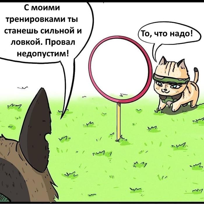 Брут и Пикси Комиксы, Брут и Пикси, Фан-Арт, Длиннопост, Кот, Собака