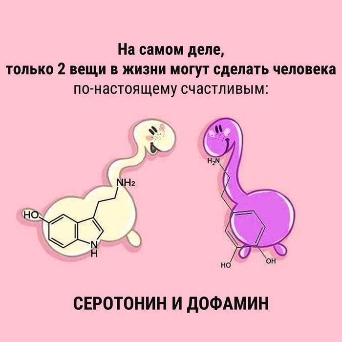 Счастье как оно есть))