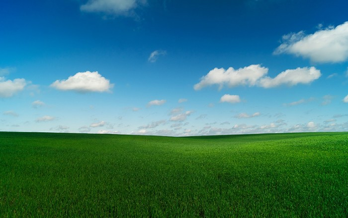 Безмятежность Липецкой области Фотография, Пейзаж, Поле, Липецк, Безмятежность, Sony a58