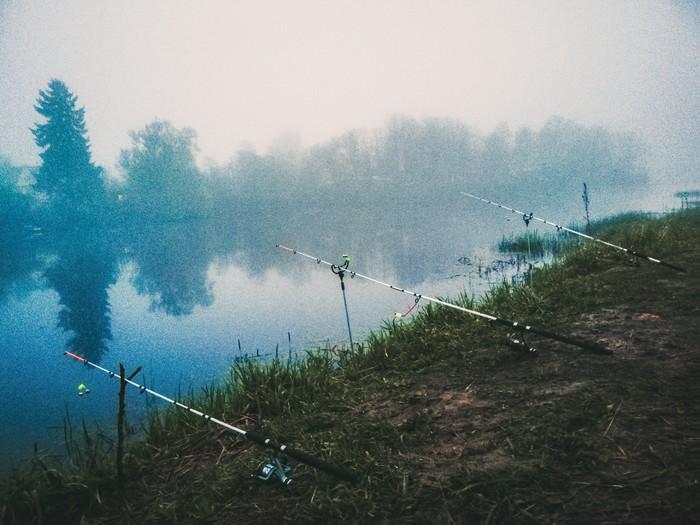 Красота, отдых Отдых, Рыбалка, Палатка, Река, Туман, Пруд, Длиннопост, Природа