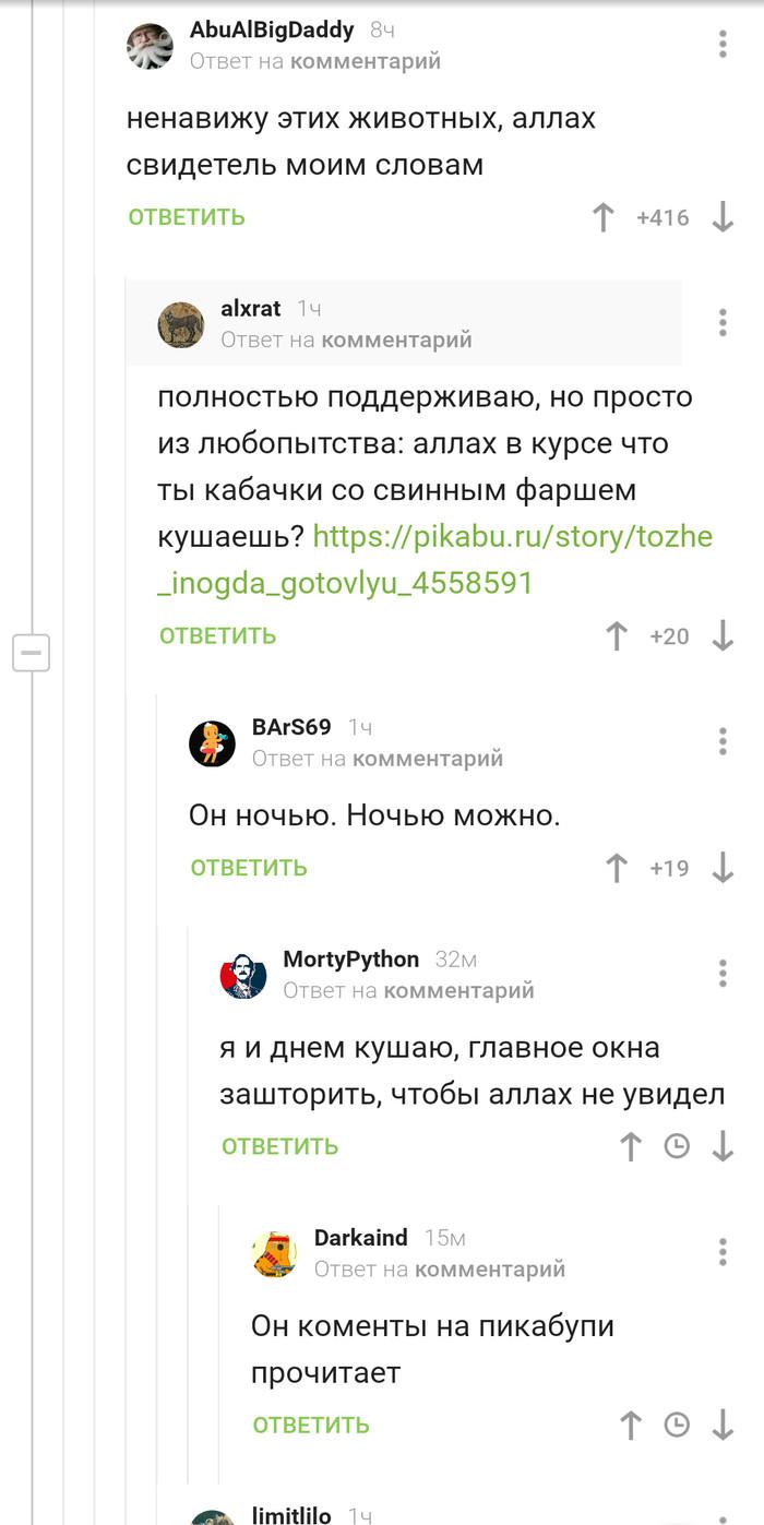 Аллах все видит))) Комментарии на Пикабу, Скриншот, Юмор
