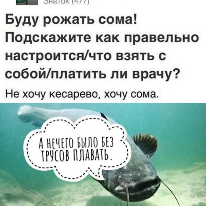 Небезопасное плаванье