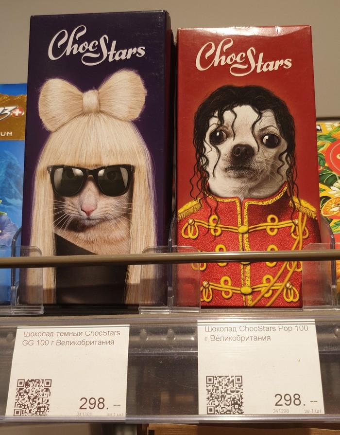 Веселые шоколадки Кот, Шоколад, Длиннопост, Собака