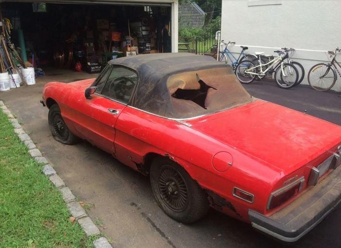 Пришли разбираться в гараже, а нашли Alfa Romeo Spider 1976 года. 25 лет заточения! Паук, Находка, Гараж, США, Barnfind, Длиннопост, Alfa romeo, Авто