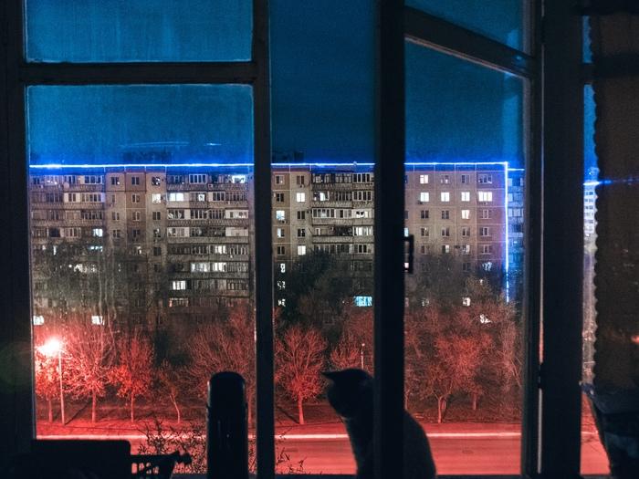Сидишь с котом на балконе, а за окном киберпанк