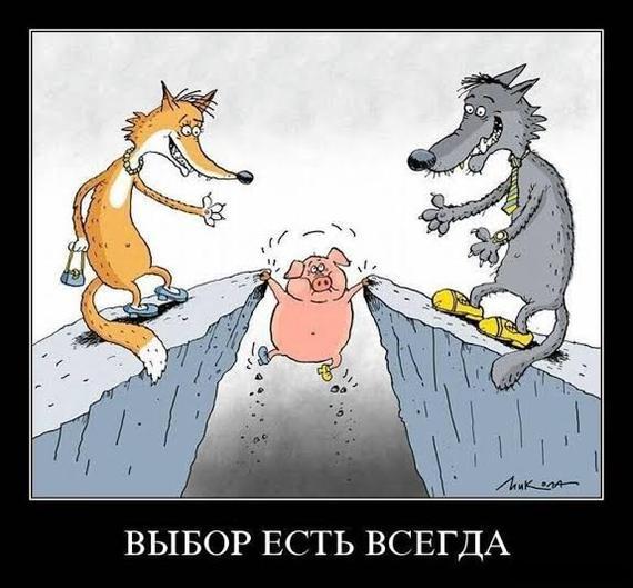 Иллюзия выбора. Политика, Украина, Печаль, Гифка