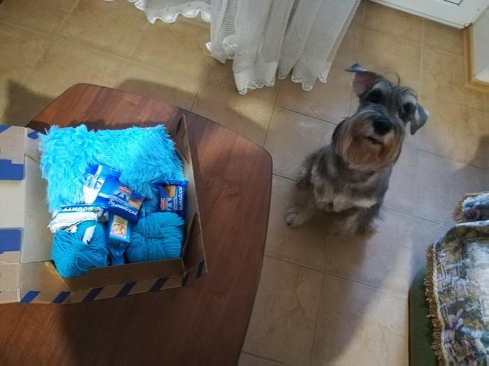 Цвет настроения-синий! Санкт-Петербург - Саратов Цвет настроения синий, Отчет по обмену подарками, Длиннопост