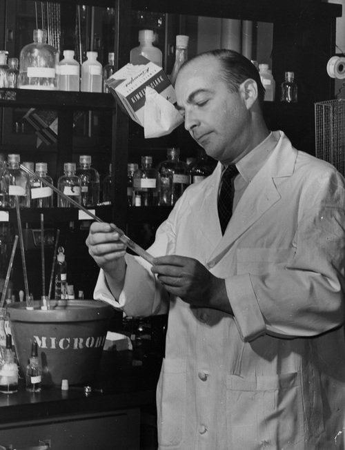 Как появились первые генные инженеры Генетика, Молекулярная биология, История науки, ДНК, Длиннопост