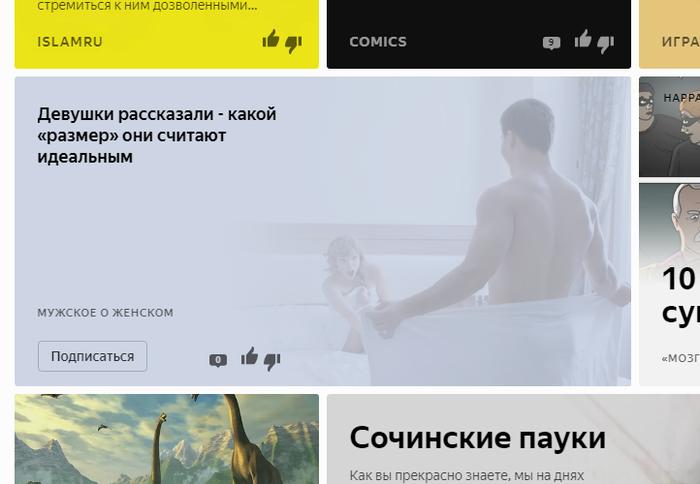 Женщинам не угодишь Янедкс Дзен, Скриншот