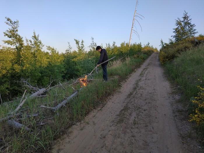 Помогите найти поджигателя леса в Тольятти Тольятти, Лес, Пожар, Поджог, Лига детективов, Поджигатель, Видео, Длиннопост, Негатив, Самарская область