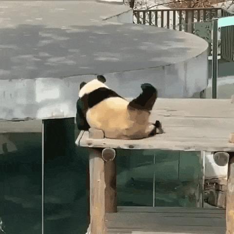 Когда некому почесать спину