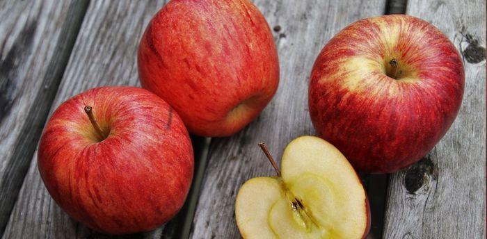 Яблоко на нашей кухне появилось благодаря вымершим животным и предприимчивым древним торговцам Яблоки, Плодовые культуры, Одомашнивание, Распространение семян, Гибридизация