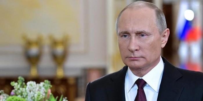 На волне Хайпа про Badcomedian Путин, Badcomedian, Юмор