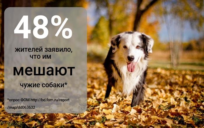 Зачем городу места для выгула собак Собака, Инициатива, Выгул, Длиннопост