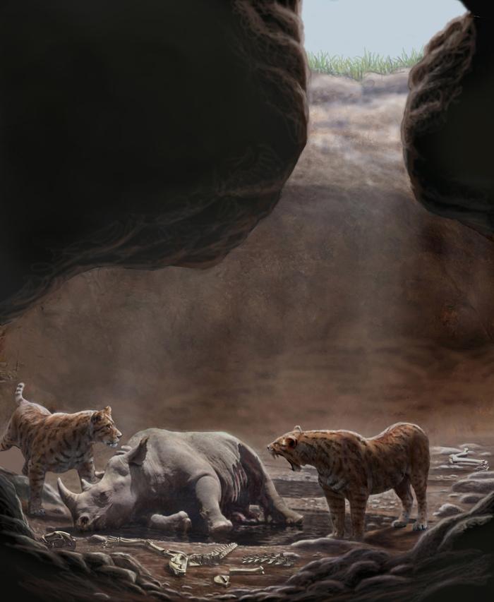 Batallones-1 Палеонтология, Кайнозой, Млекопитающие, Окаменелости, Длиннопост