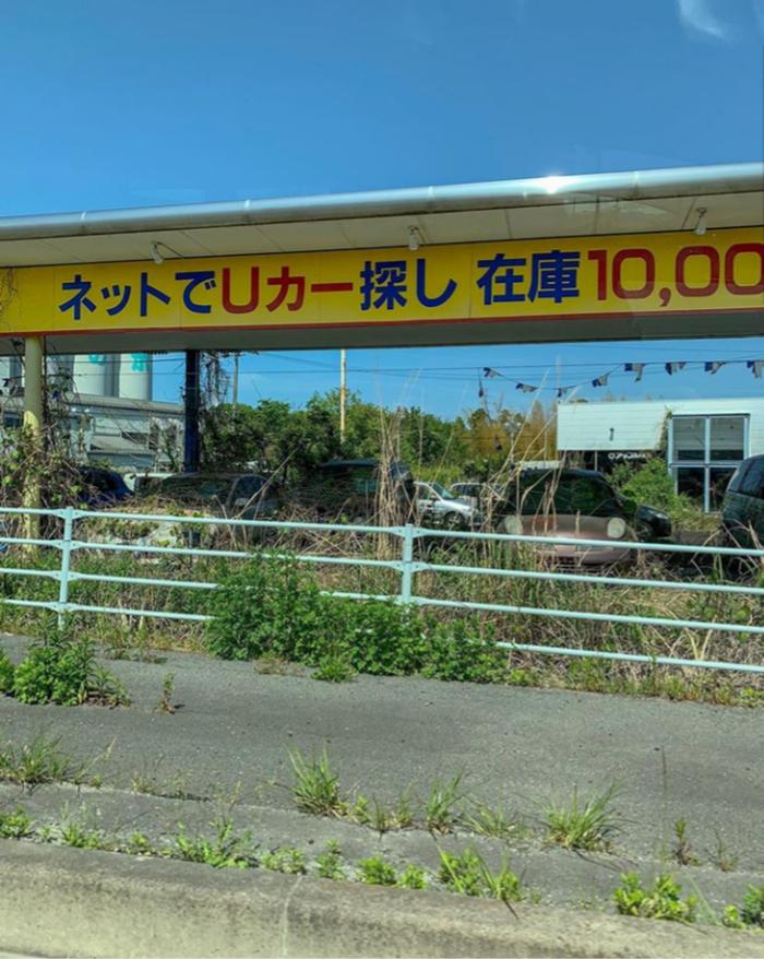 Мёртвая Фукусима: 8 лет спустя. Фукусима, Трагедия, Аэс, Длиннопост