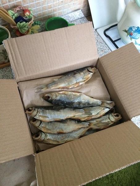 Посылка из Астрахани Посылка, Рыба
