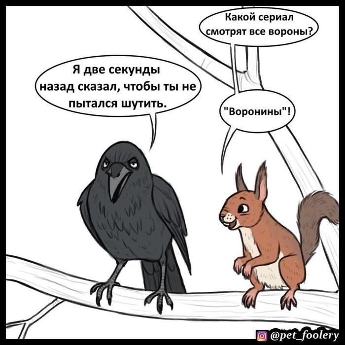 Шутки Pet Foolery, Комиксы, Длиннопост