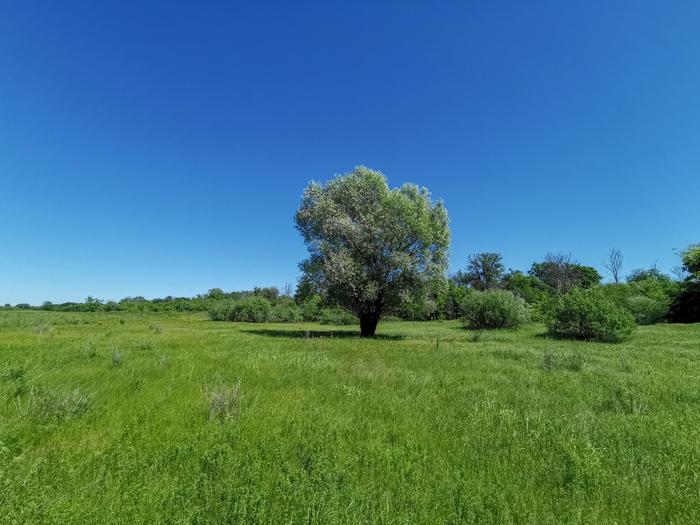 Летняя прогулка Длиннопост, Дзержинск, Мобильная фотография, Видео, Huawei mate 20, Природа, Река, Велосипед