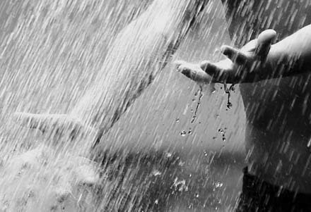 Дорожные истории Руль, Лес, Заяц, Дождь, Девочка, Яблоки, Длиннопост, Текст