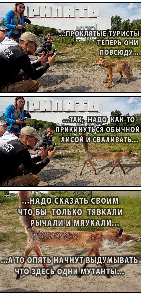 Сказки про мутантов Чернобыль, Припять, Туристы, Сериал HBO, Мемы