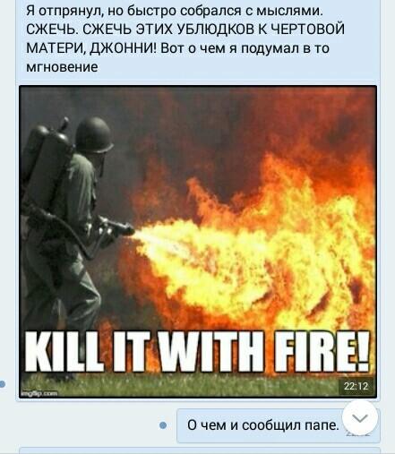 KILL IT WITH FIRE. Насекомые, Огонь, Тупость, Длиннопост