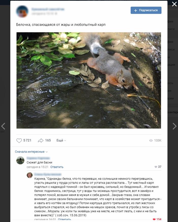 """Басня написанная """"на коленке"""" Творчество, Скриншот, Вконтакте, Комментарии, Басня"""
